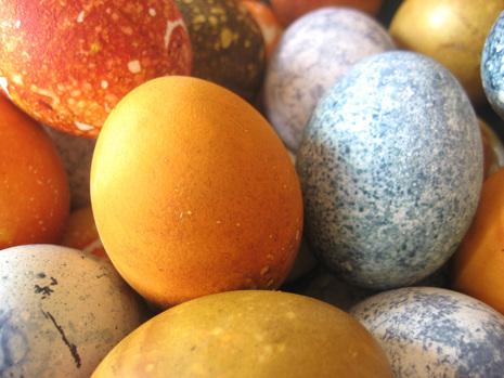 eggsclose1