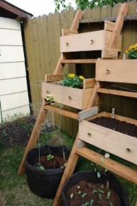 Recycled-drawers-as-growing-boxes1-200x300-1