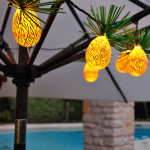 Pineapples-on-umbrella-night