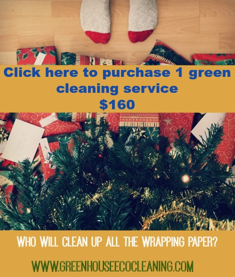 GreenHouse Eco Cleaning Gift Certificate for One Cleaning Service